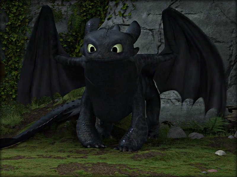 807-PROJECT2-Toothless | Yuanchi Cai